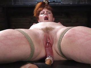 порно транссексуалы бдсм